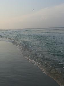 Panama City 2011 243